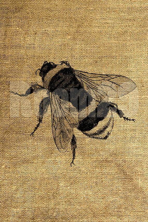 This listing is for one 8.5 X 11 digital sheet with 1 image of a bee. Actual image size is about 7.5 X 6.5 on a 300 dpi jpeg file. This image looks vintage and might have some gaps in it when printed. Our images work best on bright fabrics. This is an INSTANT DOWNLOAD: once payment is made, you will instantly receive a link to one JPG file and one PNG file for you to download. The download page is accessible from the Receipt once payment has been confirmed via the Files Ready to Download…