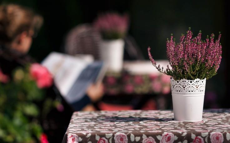 On our terrace [fot. Szymon Krężelok]