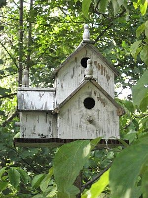 Evi's Country Snippets: Our Birdie Real Estate  #wm