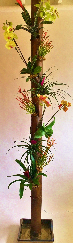 Copper Steam Punk with succulents, orchids, brommiliads