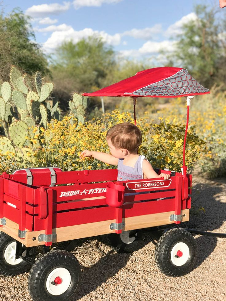 best 25 kids wagon ideas on pinterest radio flyer wagons radio cars and the flyer. Black Bedroom Furniture Sets. Home Design Ideas