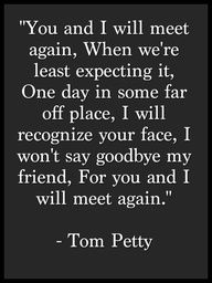 You and I will meet again when we're least expecting it. One day in some far off place, I will recognize your face, I won't say goodbye my friend, for you and I will meet again. - Tom Petty