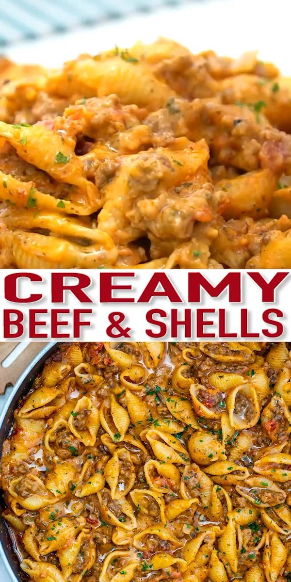 Creamy Beef and Shells is a hearty pasta dish that is perfect for a quick dinner for the whole family! It is rich, flavorful, and cheesy and even kids will love it! #pasta #pastarecipes #beefrecipes #beeffoodrecipes #sweetandsavorymeals #recipevideo