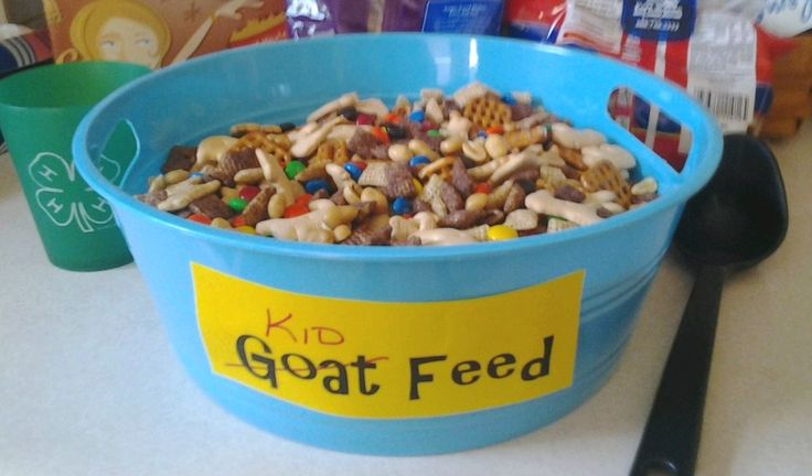 i made a fun snack for the 4h meeting   goat  kid  food