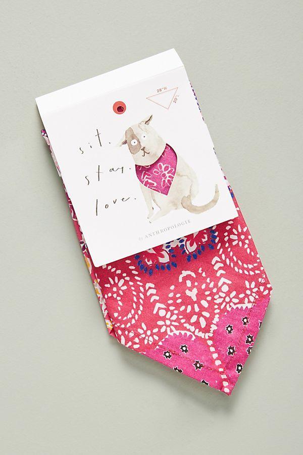36+ Diy bandana for dogs inspirations