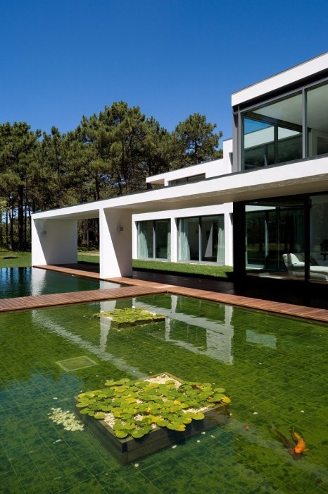 House Valsassina Architects Koi Ponds Frederico Valsassina Lake