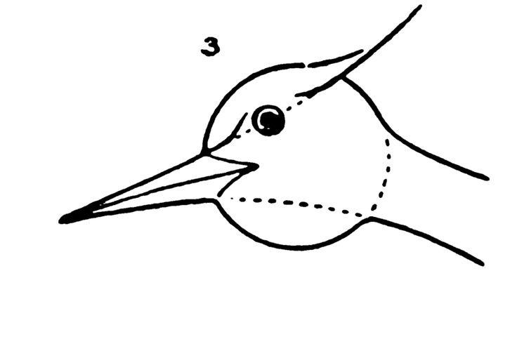 86 melhores imagens de drawing for kids step by step no for How to draw a crane step by step