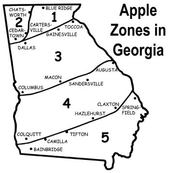 zone map and apple varieties for ga