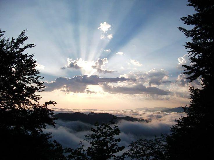 GATHA - Buvant un verre d'eau Ce verre d'eau est le nuage, qu'hier je contemplais. Tel une pluie de Dharma, il arrose aujourd'hui, le jardin de mon cœur. POESIE - Instant de grâce Ce matin, la lueur des étoiles m'a doucement éveillé. Dans la fraîcheur...