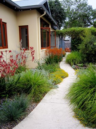 garden path Cottage style native garden.  (Looks like Australian natives to me)