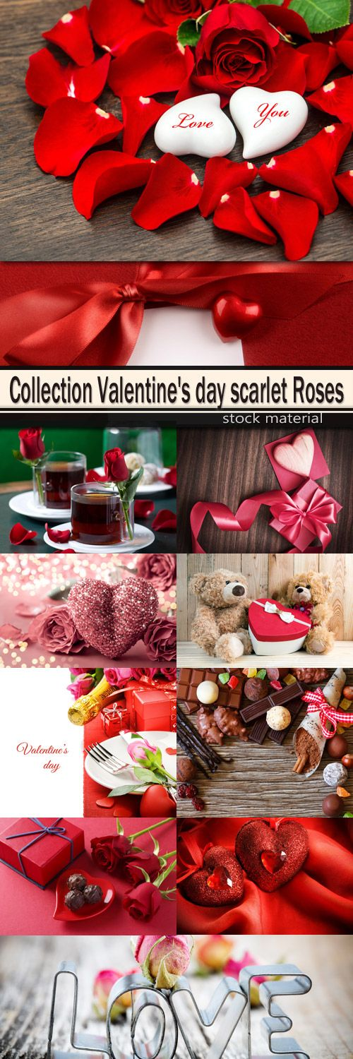 Collection Valentine's day scarlet Roses
