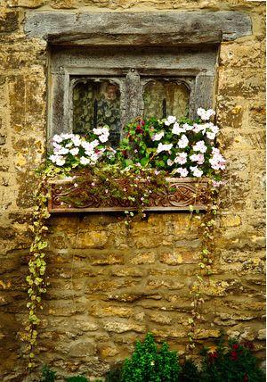 Cottage window-Provence