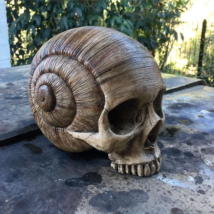 Skull, snail shell sculpture