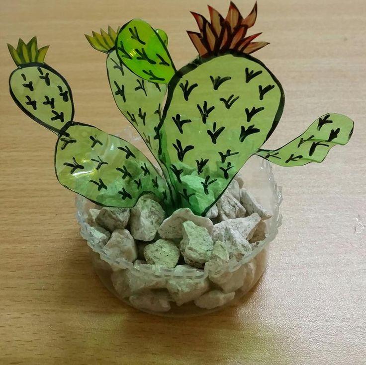 Cactus reciclado con botellas de plástico.