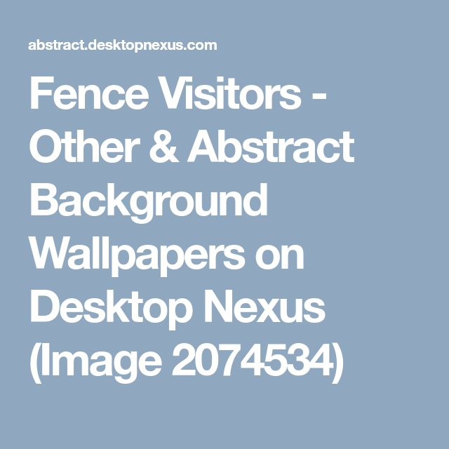 Fence Visitors - Other & Abstract Background Wallpapers on Desktop Nexus (Image 2074534)