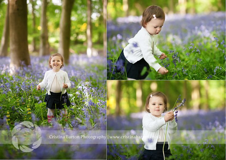 Isabel – Hampshire Bluebells Photo Session  Guildford, Farnham, Fleet Child and Family Photographer