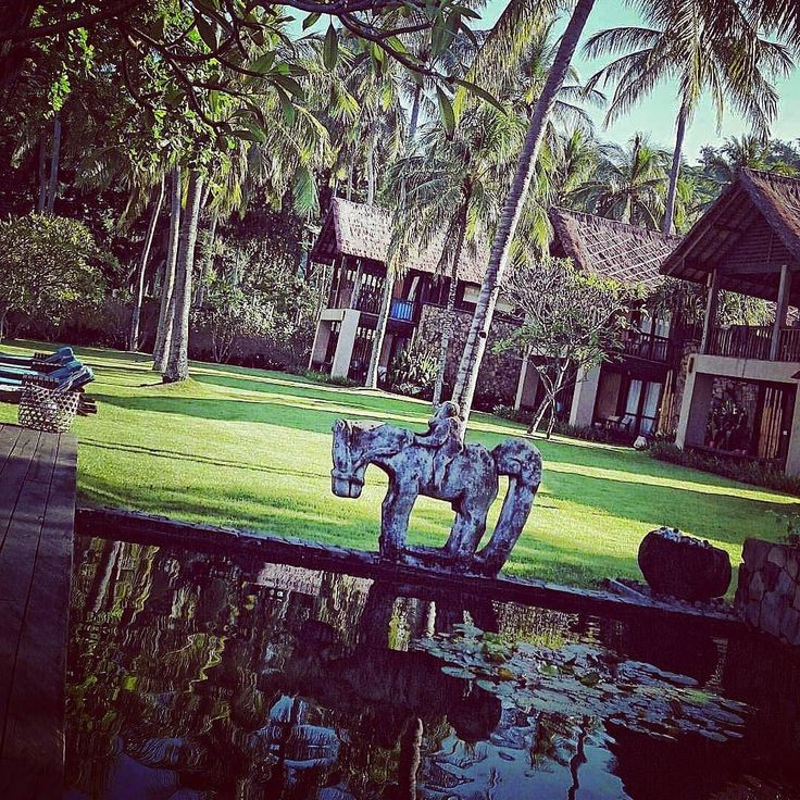 Beach side gardens at Jeeva Klui Lombok. View over Lilly ponds to main lawn. By Bali Landscape Company  @antonjclark  http://ift.tt/1QzTwns  #horse #statue #pond #grass #lawn #resort #hotel #lombok  #landscape #landscapedesigner #landscapearchitecture #gardenlovers #taman #tropicaldesign #tropicallandscape  #balilandscaper #landscapecontractor #gardenlovers #tropicaldesign #landscapearchitect #garden #gardenideas #gardeninspiration #instagarden #gardendesign #landscapedesign #Regrann