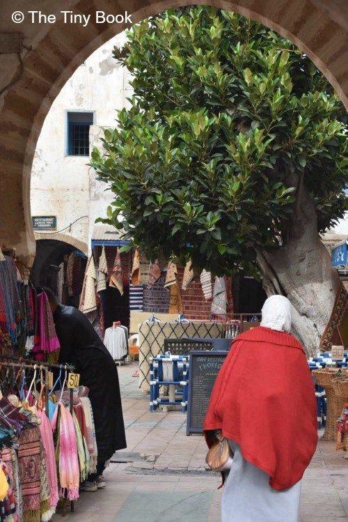 Essaouira_wind_city_of_africa