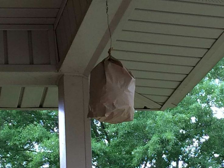 Fill a paper lunch sack with plastic grocery bags and hang it up to discourage bees, hornets, wasps, mud daubers, carpenter bees, and bumble bees. It looks like a hornets nest, and other bees will stay away.