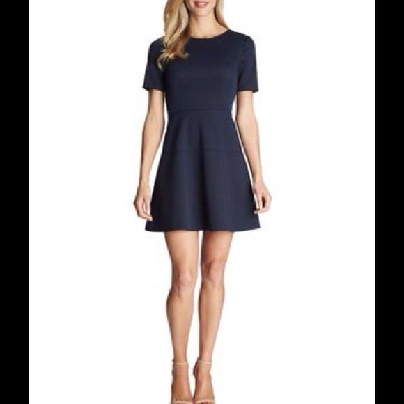 CeCe by Cynthia Steffe Seamed Scuba Dress CeCe by Cynthia Steffe Seamed Scuba Dress -- Round neck, short sleeves, back zip closure and horizontal seams; Polyester; Machine Wash Cynthia Steffe Dresses