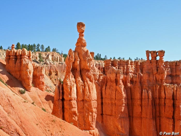 I went here with a friend and it was like being on another planet. These are hoodoos in Bryce Canyon