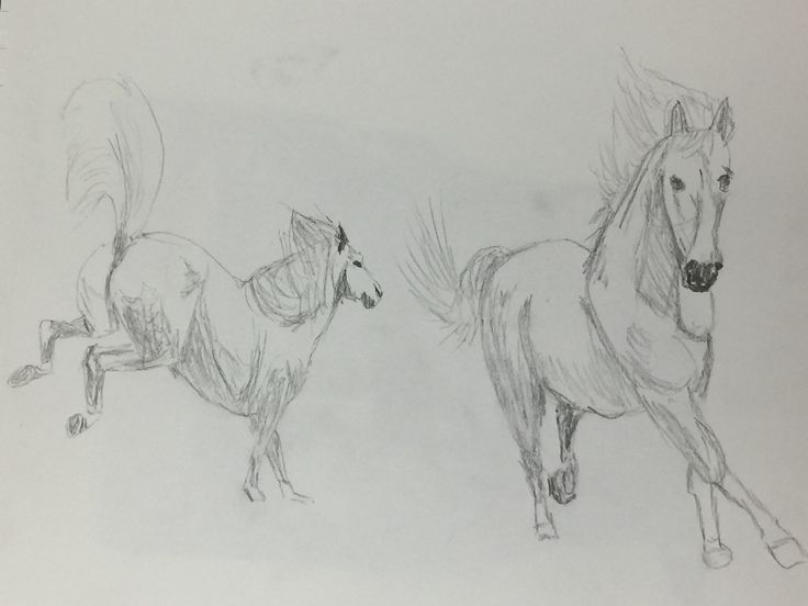 I was instructed to do some rapid sketches with minimal detail and I was interested in painting a horse...so here are so rapid horses