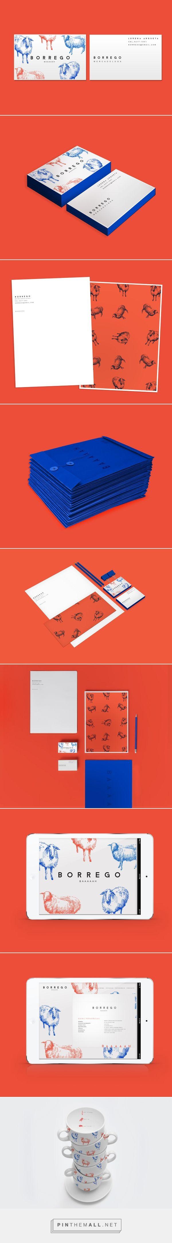 Borrego Branding on Behance | Fivestar Branding – Design and Branding Agency & Inspiration Gallery