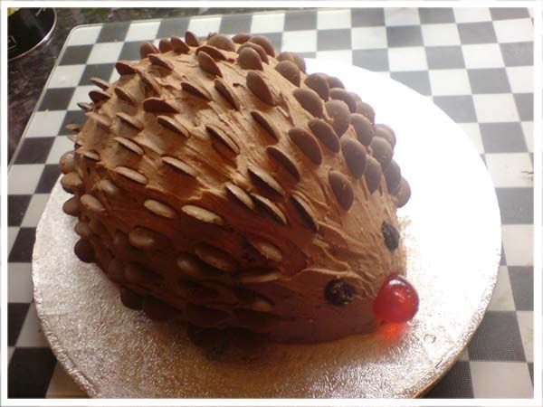 THEY JUST COMBINED TWO OF MY FAVORITE THINGS!!!! Hedgehogs and chocolate can it get any better than that???