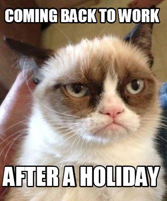 Meme Maker - Coming back to work After a holiday Meme ...