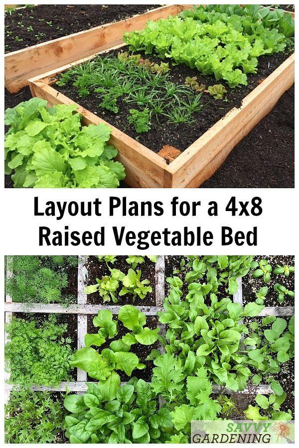 4x8 Raised Bed Vegetable Garden Layout Ideas What To Sow Grow Vegetable Garden Raised Beds Garden Layout Vegetable Raised Bed Vegetable Garden Layout