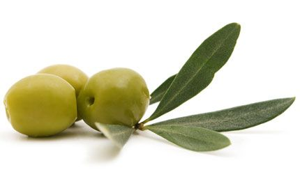 Greek geen olives