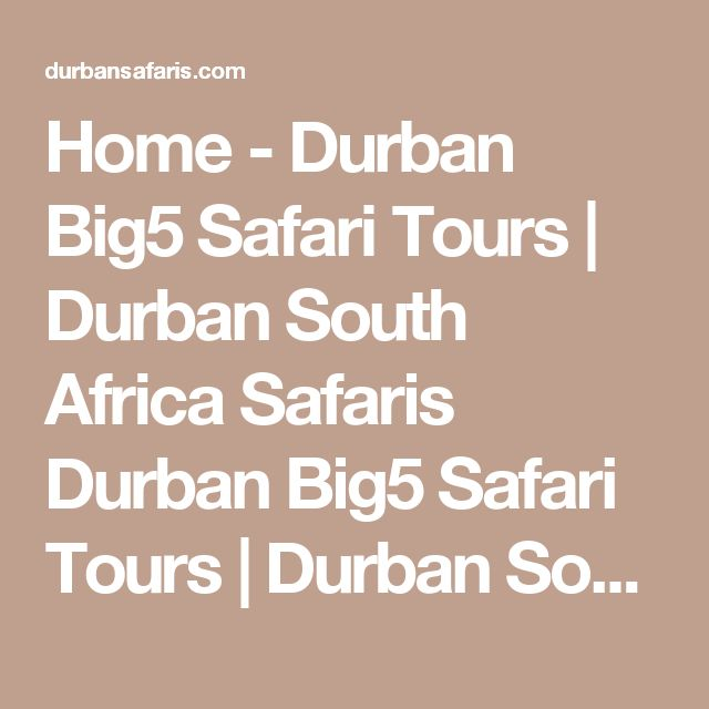 Home - Durban Big5 Safari Tours | Durban South Africa Safaris Durban Big5 Safari Tours | Durban South Africa Safaris