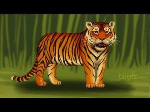 ▶ Zoo Stories: Jungle Animals (for preschool and kindergarten kids) - YouTube