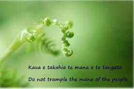 Image result for te tataiako
