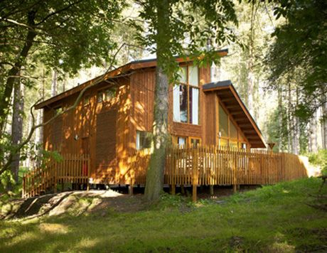 Cabin in the woods - UK