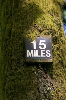 There are plenty of amazing hikes out there, but what about all the trails in Portland proper?http://www.oregonlive.com/travel/index.ssf/2016/05/portland_hiking_guide.html