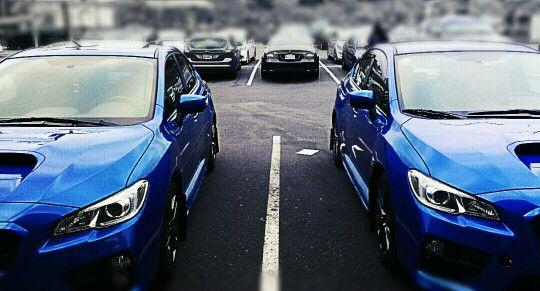2016 Subaru WRX Premium and base