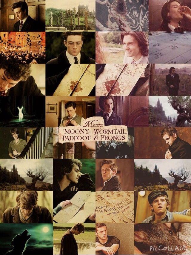 Aaron Taylor-Johnson as James Potter. Ben Barnes as Sirius ...