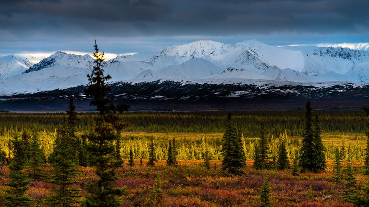 Tundra and Foothills by Tom Stoncel on 500px