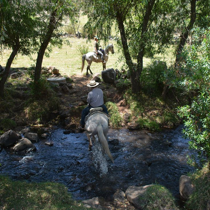 On every ride you will find new and breath taking scenery… http://rancholascascadas.com