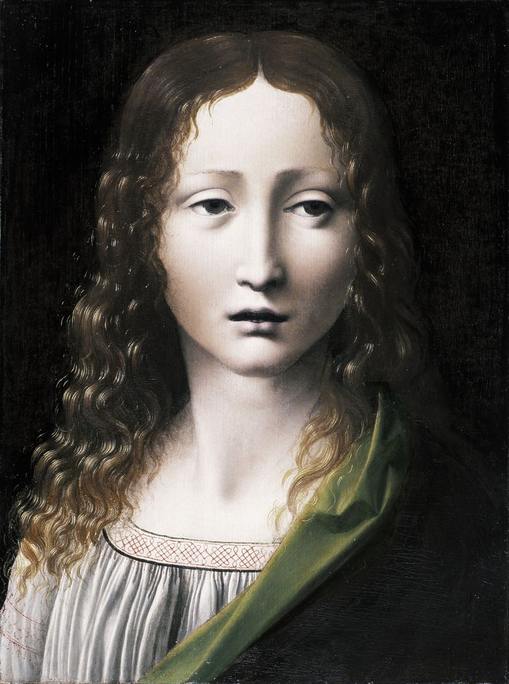 Giovanni_Antonio_Boltraffio_-_The_Adolescent_Saviour_-_Google_Art_Project.jpg (3720×5001)