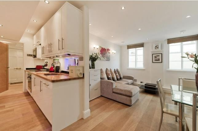 Reception room basement flat London SW3  #cutlerandbond #basementflat #gardenflat #londonproperty