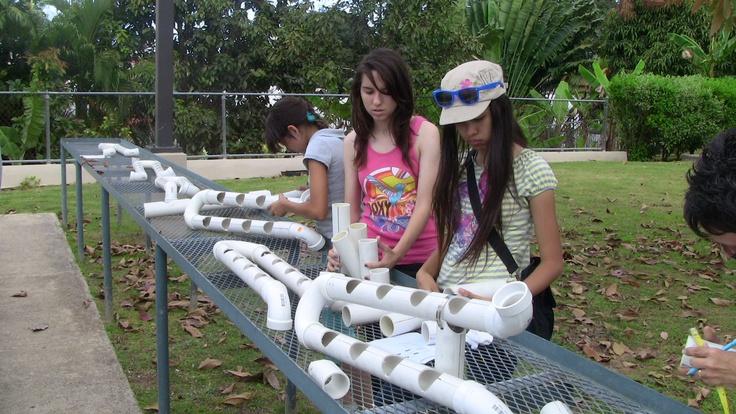 Un dia dedicado a los hidroponicos