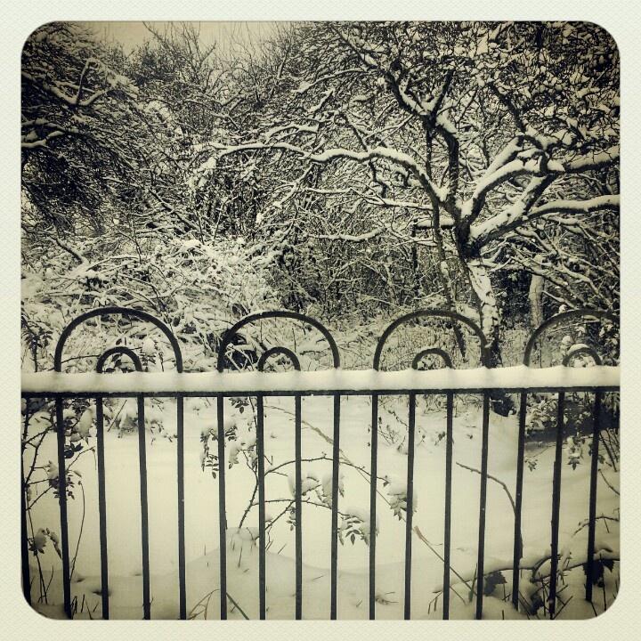 Snowy railings.