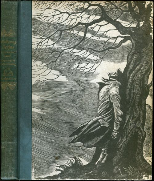domesticity in the novel wuthering heights by emily bronte Women writers, including emily brontë, with the gothic fiction  by assuming a  domesticity, which is contrary to her true nature.