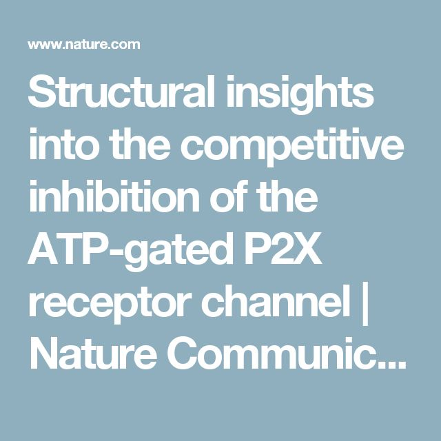 Structural insights into the competitive inhibition of the ATP-gated P2X receptor channel | Nature Communications