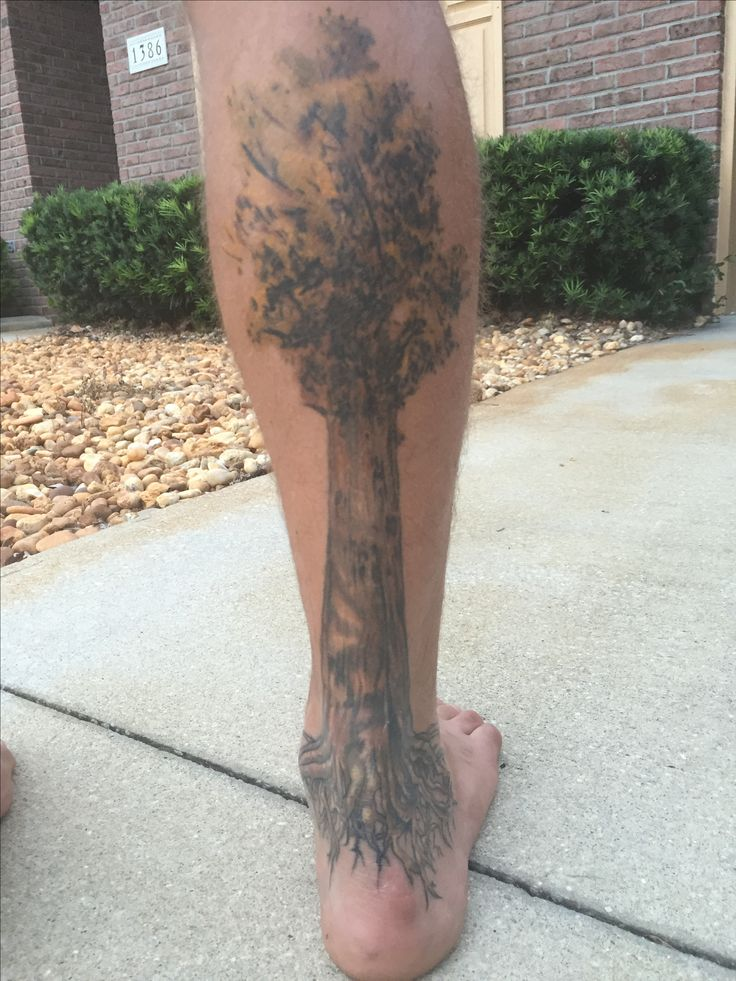 This is my General Sherman Giant Sequoia tattoo! Turned out amazing! Not gonna lie, the ankle was not pleasant.