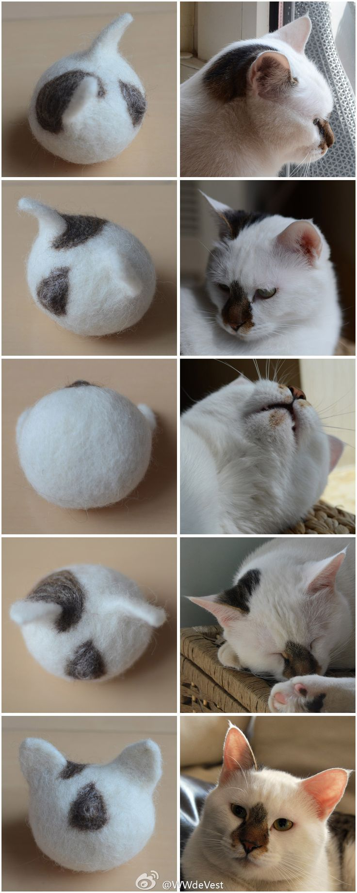 Cat face:  Next came Q-Tip and his action figure.