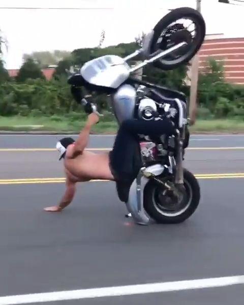 Harley Davidson Road Wheelie Daredevil Magic