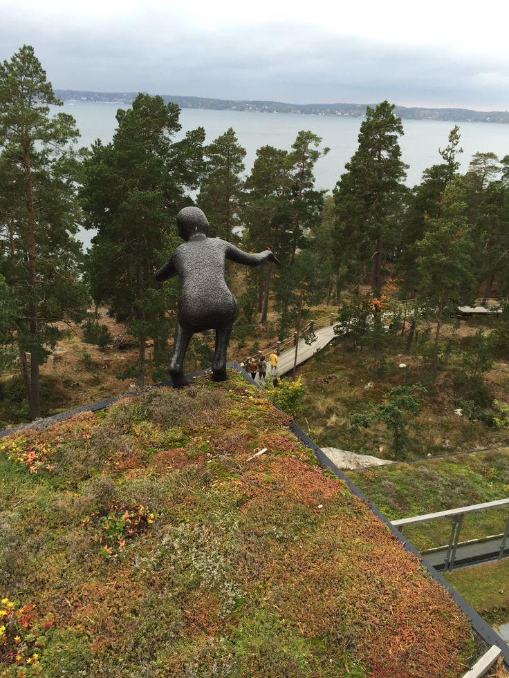 På taket av Artipelag med utsikt över Baggensfjärden